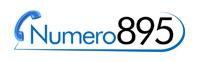 Vai al sito Numero 895 .it